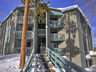 Incredible 1BR Summit County Condo - Sleeps 8! Recently Updated & Near 7 Different Ski Resorts, Silverthorne