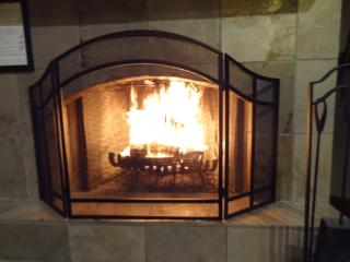 FIREPLACE: Warm, romantic, cozy and wood burning