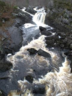 You can walk through Contin forest to Rogie Falls