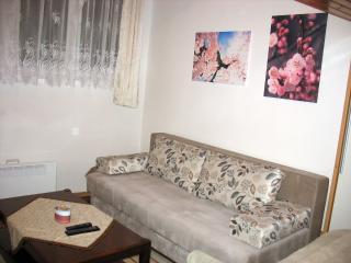 Unique apartment with duplex room, Saraievo