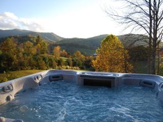 VIEWS, PRIVACY, CONVENIENCE, Hot Tub, 8 Acres, Pet Friendly