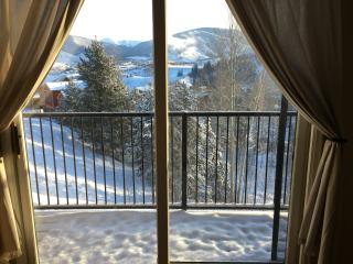 2BR/2BA - Breathtaking Views - Multiple Ski Areas, Silverthorne