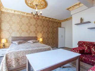 Pashas Suite Istanbul No:1 Family Apartment in Sultanahmet-Kumkapi