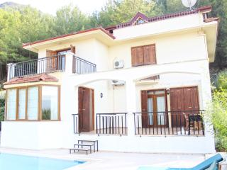 4 bedroom secluded Villa Dora for rent in Uzumlu, Yesiluzumlu