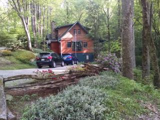 Creekside Apartment near Highlands NC and Sky Valley GA
