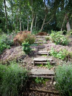 Steps in the garden