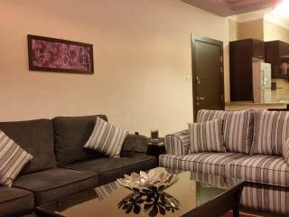Luxury Furnished Apartment (2 bedroom)