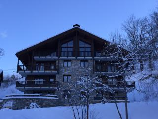 Luxury 1-Bedroom Ski Apartment, St Martin de Belleville, Saint-Martin-de-Belleville