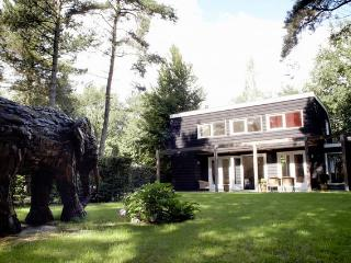 Delightful property in forested park, Moergestel