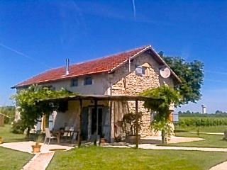 "Farmhouse-vineyard, views, pool, wifi, games-room - ""Grange d' Hibou""-Les Marais, Bergerac"