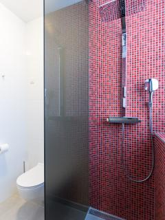 Very modern spacious shower