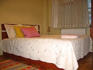 Cosy Room Near Taksim - City Center