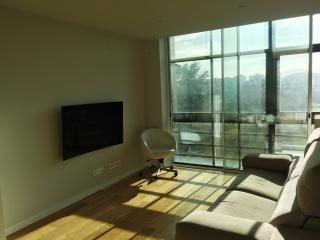 Apartamento Singular Deluxe, Pamplona
