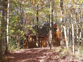 Pointe of Nature Cabins- Ridgeview, Laurelville