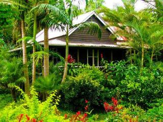 Coco's Cottage in the Byron Bay Hinterland, Bangalow