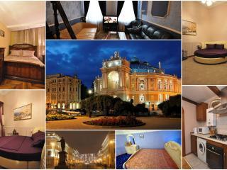 Luxury Apt Up to 8 Odessa