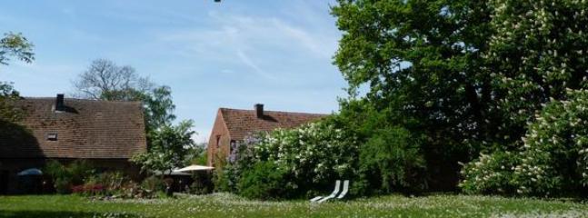 Große Liegewiese auf der 'Alten Ziegelei'