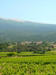 The Mont Ventoux in Spring