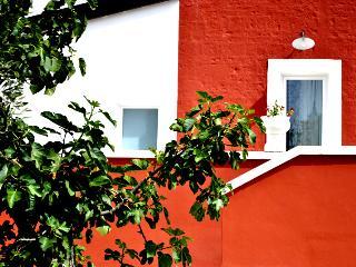 Villa Giorgia 'nel cuore della Puglia' Ulivi