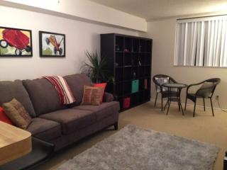 Fully furnished 1 bedrm downtown