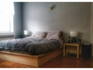 Studio Apartment with home theater in Sunset Park, Brooklyn