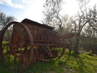 Agriturismo San Silvestro - MonnaLisa apt.
