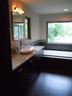 Downstairs Bathroom with large soaking tub overlooking the lake