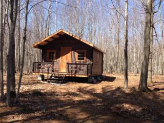 Wild Chalet 100% Venise-en-Quebec