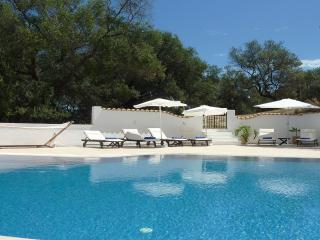 Villa Linakis with pool - your own private oasis!, Agios Stefanos