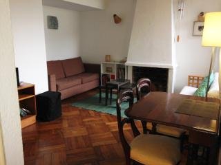 Cosy apartment in Providencia, Santiago