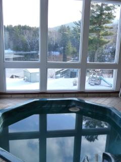 Indoor Jacuzzi (the Other is on the Outside Pool deck)