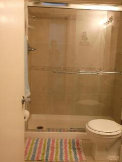 Modern walk in shower in main bathroom