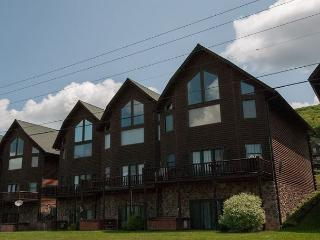 Stylish & Appealing 4 Bedroom townhome with lake & ski slope views!, McHenry