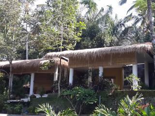3 Bedroom Villa Rimba (in majestic jungle valley)