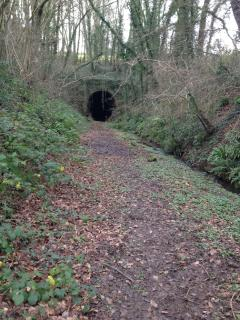 View of the tunnel from further way.