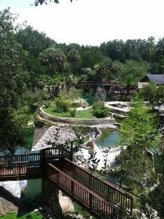 Next door attraction - Cedar Lakes Woods and Gardens