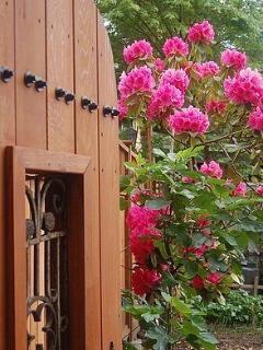 Bee & Thistle Garden
