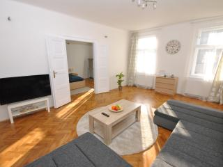 Gigantic luxurious apartment in awesome location, Praag