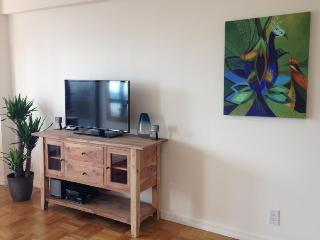 Centrally located 1 bedroom apartment, New York City