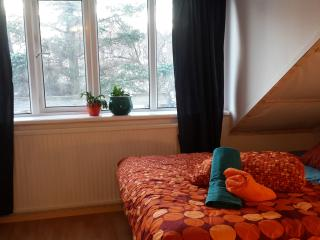 Mr. Midtun, a lovely room for two, bright & lofty, Reykjavik