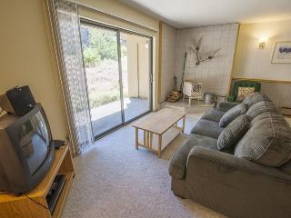 Base Camp #19 Fresh and Bright One Bedroom, Kirkwood