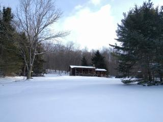 Cozy Cabin in the Catskills for Winter, Andes