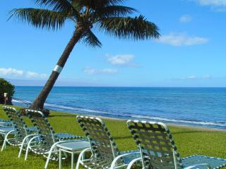 414-Paki Maui - Garden View! OceanFront Resort!, Honokowai