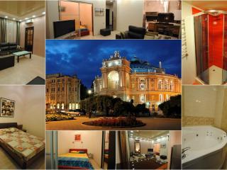Spacious flat Odessa