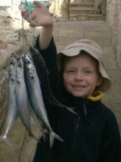 Mackerel fishing success