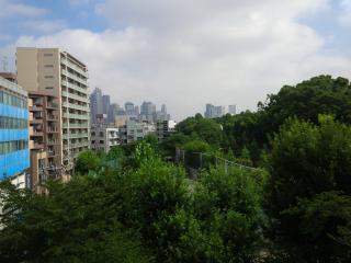 Amazing View !! Yoyogi Park Apartment, Shibuya