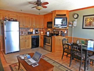 Stunning 1BR/1BA w/ AC & Dedicated Internet - Next to Slopes & Village, Snowshoe