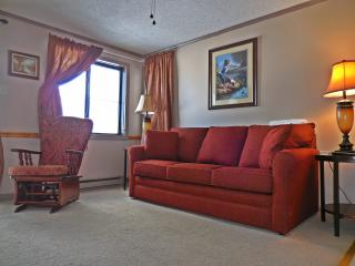 1BR/1BA Corner unit in Mtn Lodge with great view of Mountains and Lake!, Snowshoe