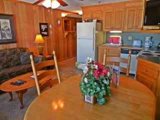 1BR/1BA Faces Slopes & Ballhooter Chair-Lift - Wi-Fi - Walk to Village!, Snowshoe