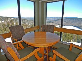 Family-Friendly!  - Large 3BR/3BA Mountain Lodge - Wi-Fi  - Next To Village